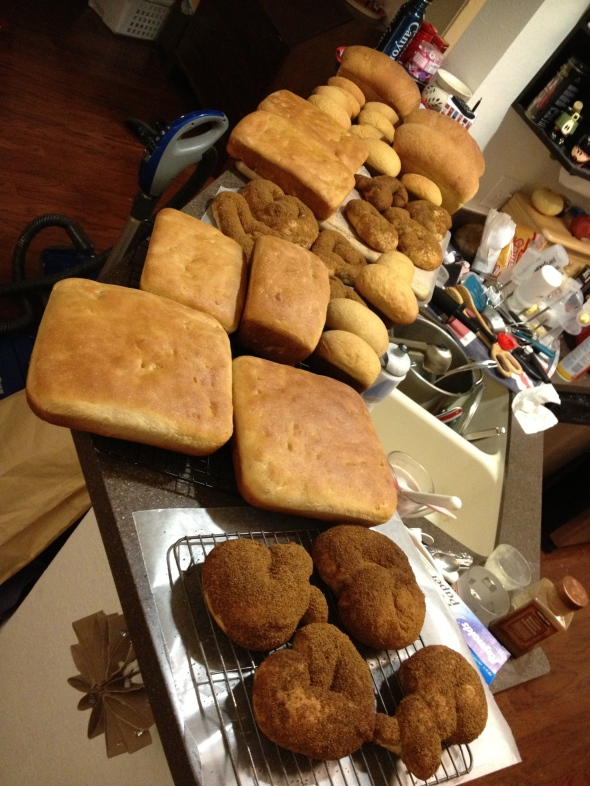 Shown here: 6 loaves of focaccia, 16 mini loaves and 3 large loaves of sandwich bread, and a bunch of cinnamon-sugar coated pretzels (brown from the sucanat used instead of regular sugar); not shown: 2 big loaves and 8 mini loaves baked this morning at a new friend's house, the loaf of cinnamon-sugar bread we ate with dinner, 4-5 pretzels we already squirreled away in our bellies :)